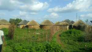 picture-a-typical-traditional-village-on-the-savannah